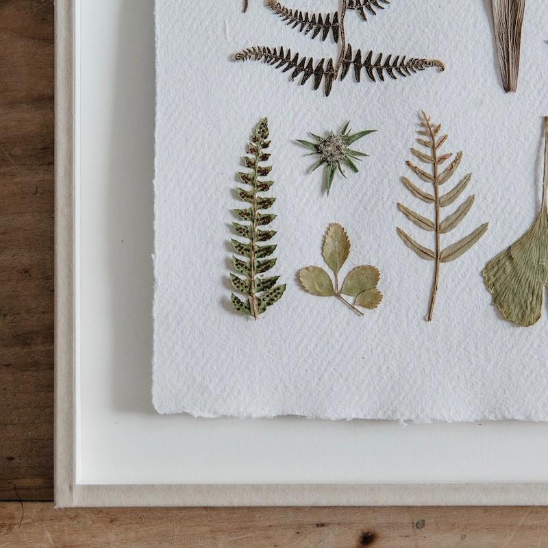 Pantone-de-flores-prensadas-con-tonos-verdes